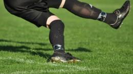 Brankář odkopává míč - ilustrační foto.
